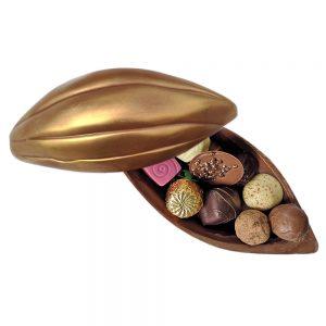 Milk Chocolate Cocoa Pod