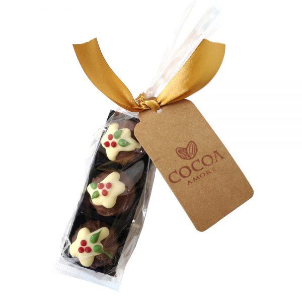 Christmas Pudding Packs